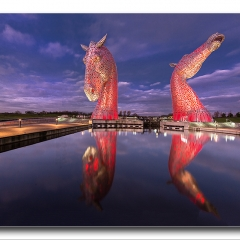 Alan Gray - kelpies