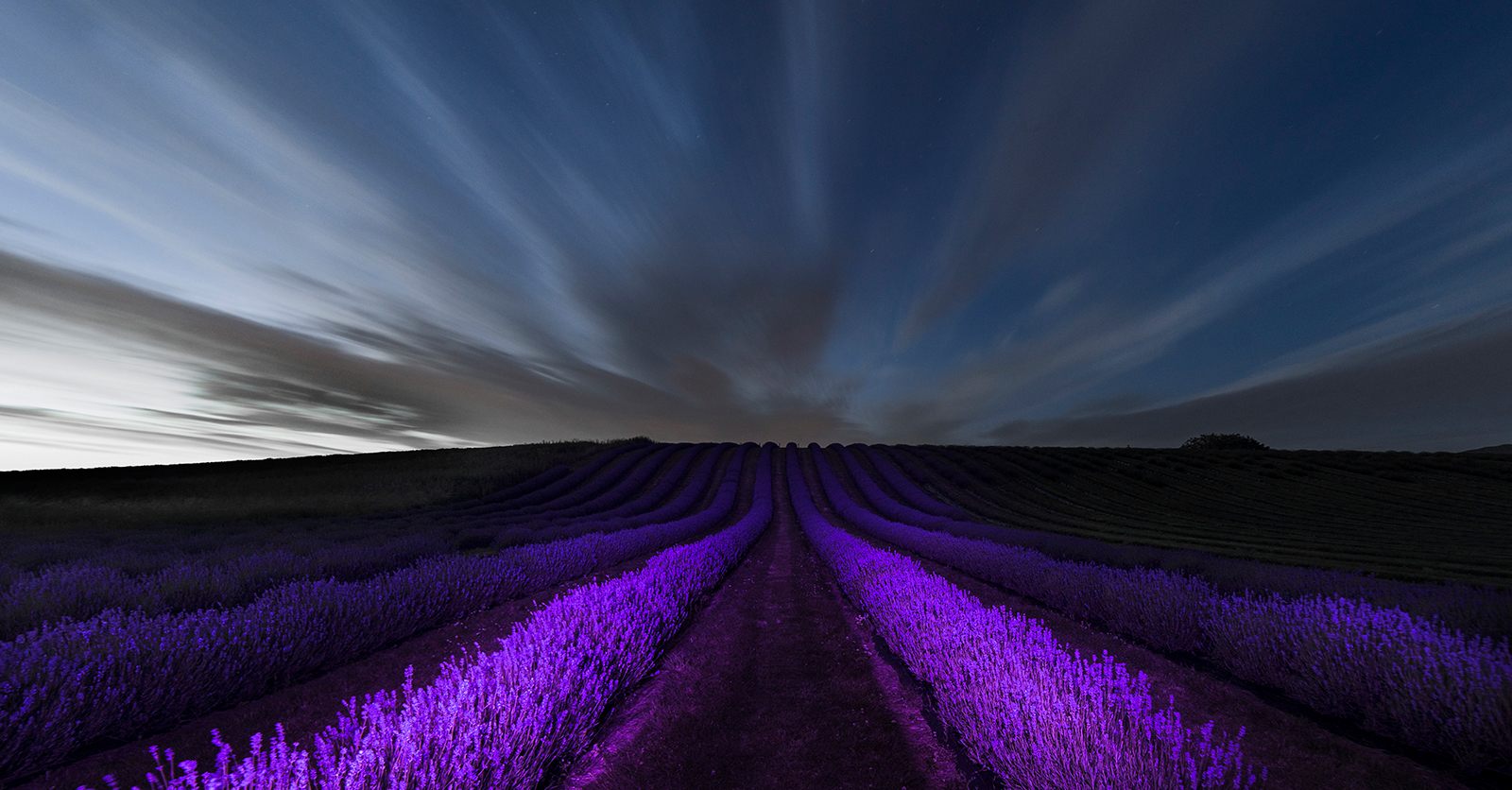 purple-and-blue-hour_271