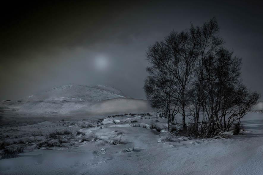 The-Wilderness-Robert-Lapsley